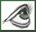 Eyes2C